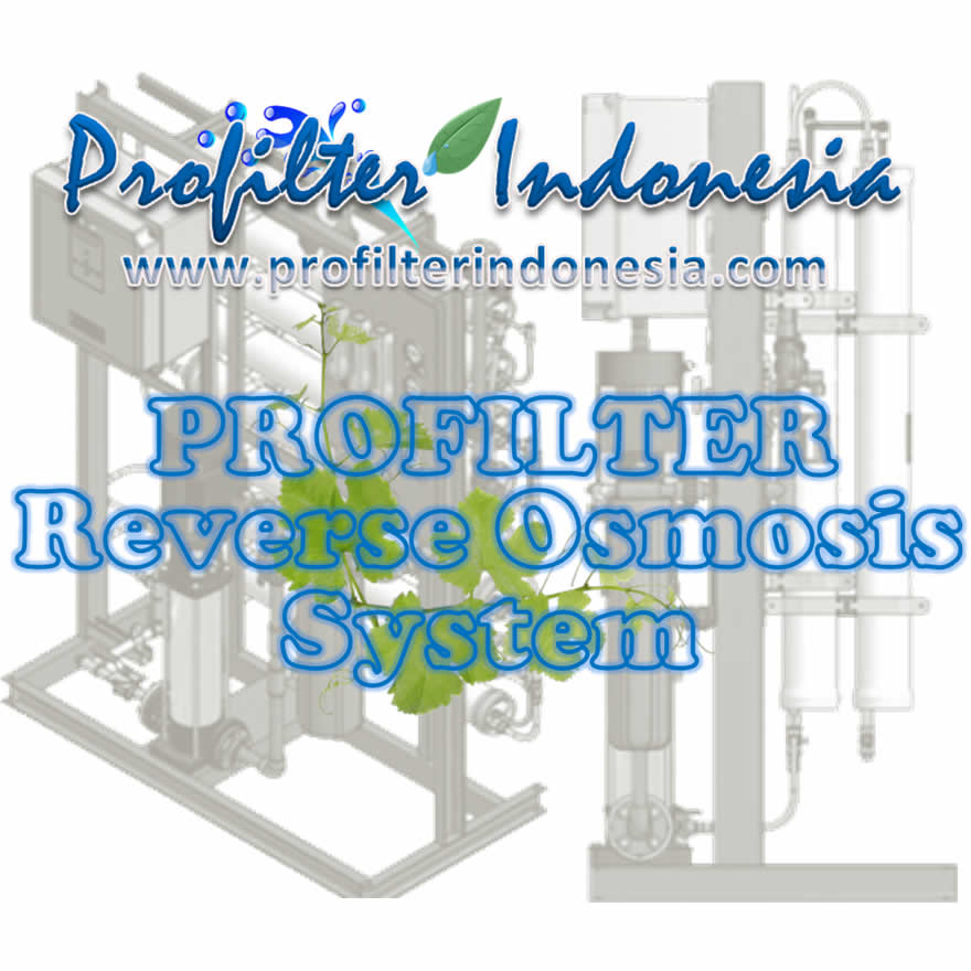 Reverse Osmosis Systems Air Asin Pt Profilter Indonesia
